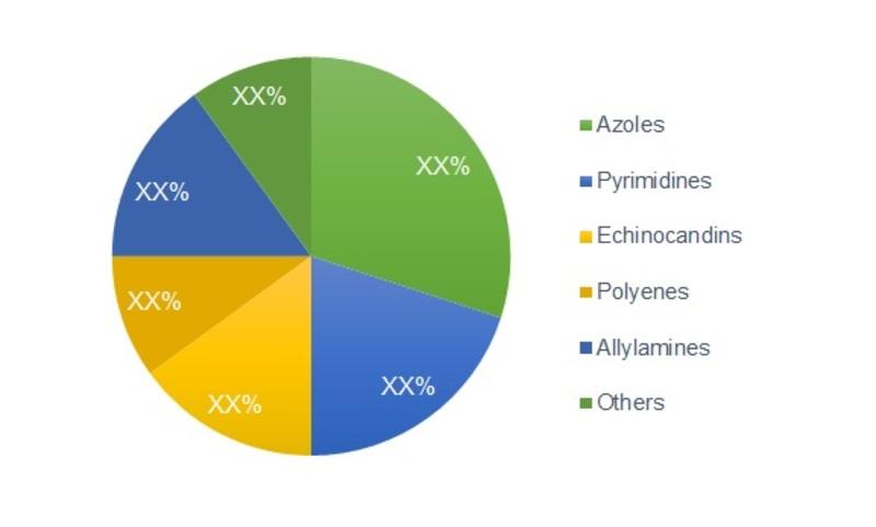 Anti-Fungal Agents Market Image