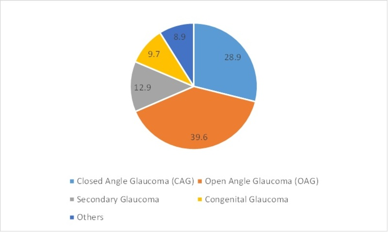Asia-Pacific Glaucoma Treatment Market Share, by End Users