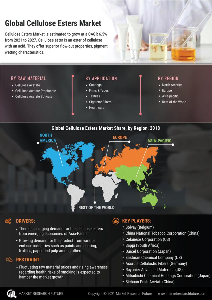 Cellulose Esters Market
