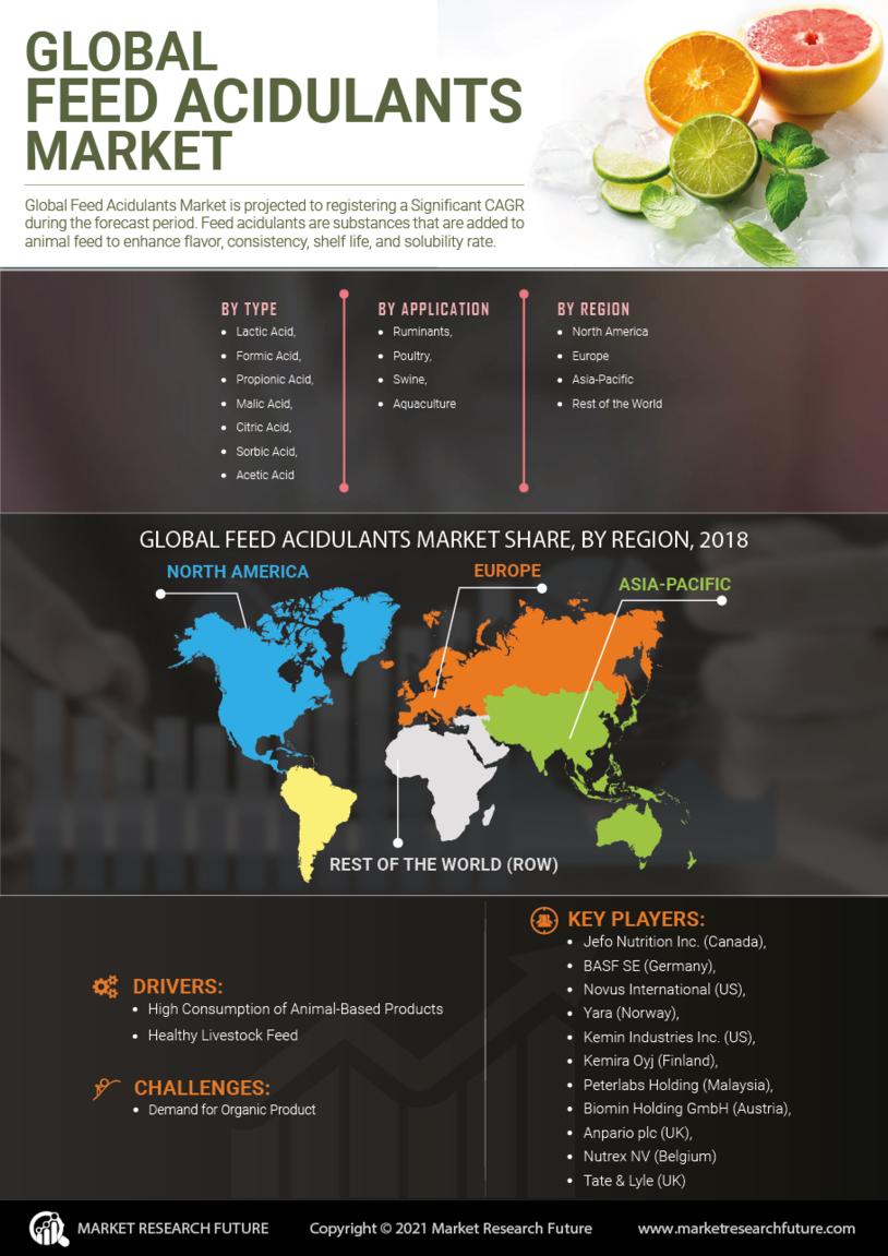 Feed Acidulants Market