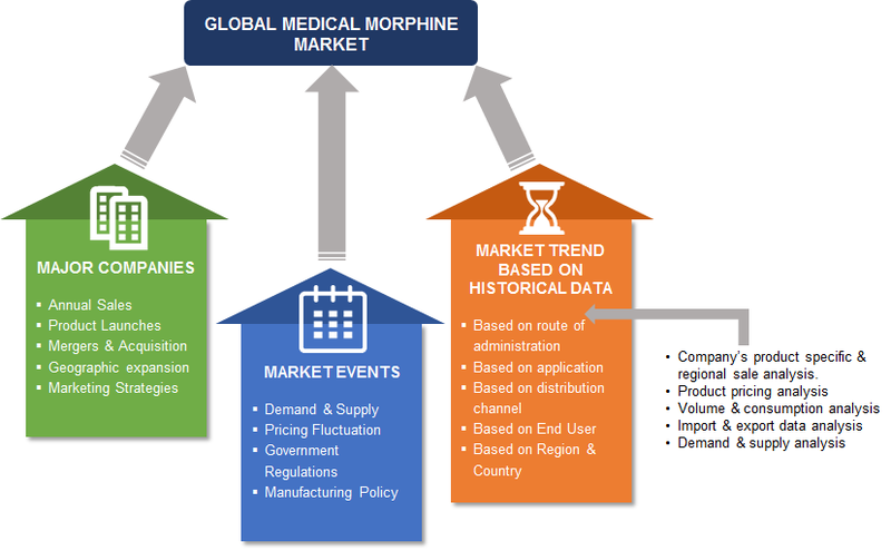 Medical Morphine Market Method