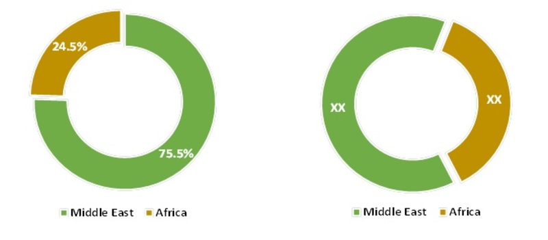 Middle East & Africa Micro-pump Market Share, 2013 & 2017