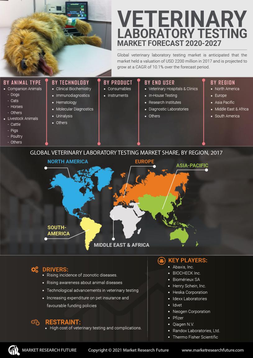 Veterinary Laboratory Testing Market