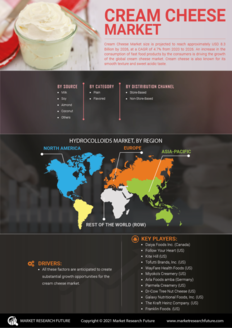 Info index view cream cheese market  information by segmentation  growth drivers and regional analysis