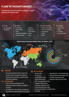 Info index view flame retardants market 01