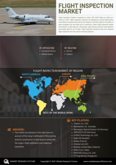 Info index view flight inspection market  information by segmentation  growth drivers and regional analysis