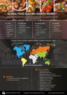 Info index view food glazing agents market 01