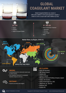 Info index view global coagulant market