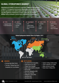 Info index view global hydroponics market 01