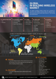 Info index view global in building wireless market 01