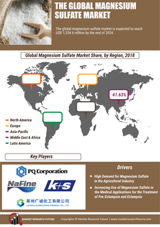 Info index view global magnesium sulphate market