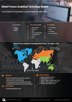 Info index view global process analytical technology market  information by segmentation  growth drivers and regional analysis