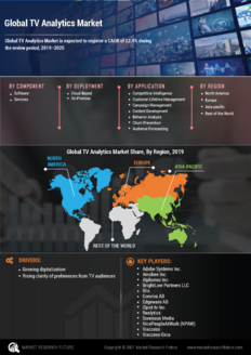 Info index view global tv analytics market information by segmentation  growth drivers and regional analysis
