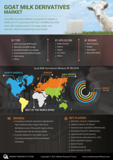 Info index view goat milk derivatives market 01