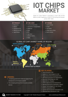 Info index view iot chips market 01