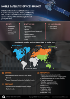 Info index view mobile satellite services market 01
