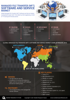 Info index view managed file transfer  mft  software and service market 01