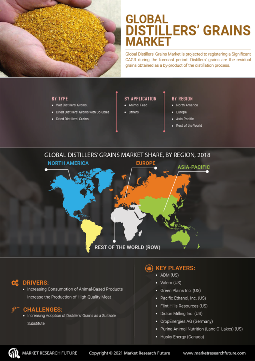 Distillers Grains Market