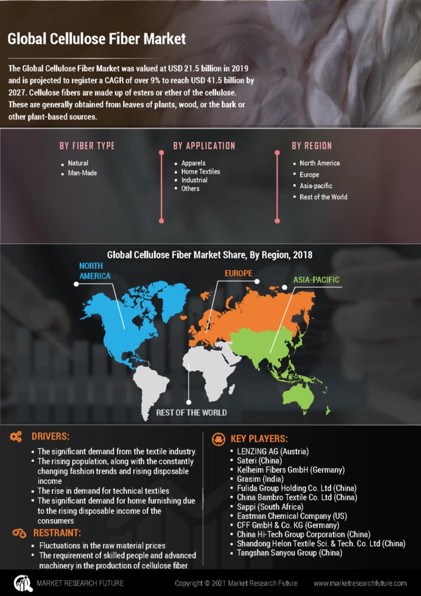 Cellulose Fiber Market