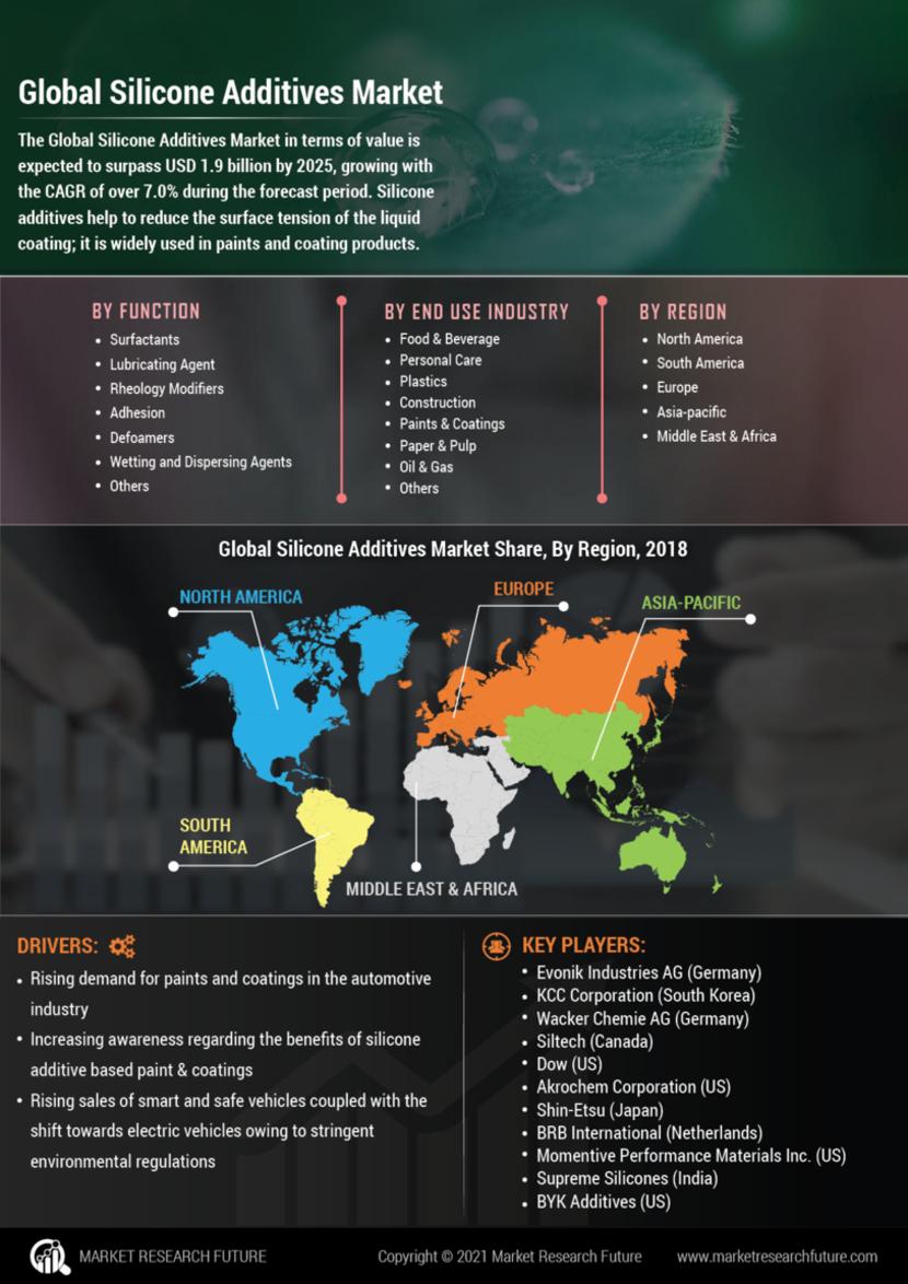 Silicone Additives Market