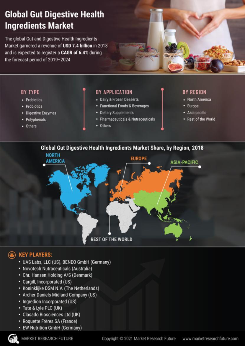Gut Digestive Health Ingredients Market