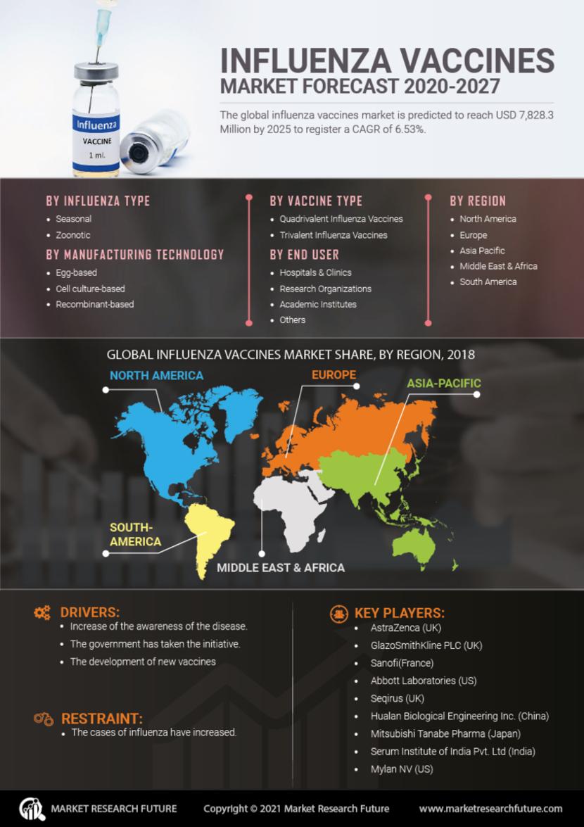 Influenza Vaccination Market