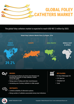 Thumb global foley catheters market